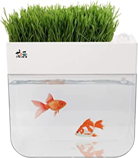 Homend Ecosystem Fish Tank,Fish Tank Grow Plants Seed Sprouter Wheatgrass Sprouts Hydroponic Cleaning Ecosystem Water Garden Fish Tank