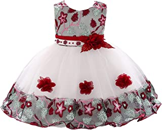 Embroidery 3D Flower Girl Dress Tulle Lace Formal Party Baby Dress 3M-9T