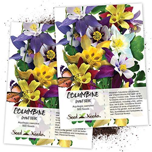 Seed Needs, Giant Star Columbine Mix (Aquilegia caerulea) Twin Pack of 500 Seeds...