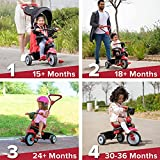 Zoom IMG-1 smartrike triciclo swing deluxe 650