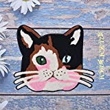 iron on patch,parches para ropa,Aplique de bordado, utilizado para decorar ropa para reparar agujeros en la ropa, ojos de gato grande de dos tonos 1 pieza
