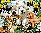 Gofission Paint by Numbers Dog Cat Rabbit Flores amarillas, 40,6 x 50,8 cm, kit de pintura numérica (animales 1, sin marco)