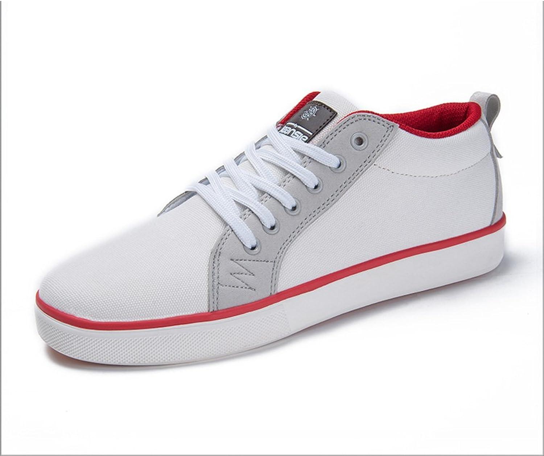 WLJSLLZYQ Jugend Schuhe Herren Freizeitschuhe Student-Schuhe Sommerschuhe