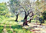 Das Museum Outlet–The Olive Grove, 1910–Poster