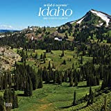 Idaho Wild & Scenic 2022 12 x 12 Inch Monthly Square Wall Calendar, USA United States of America Rocky Mountain State Nature