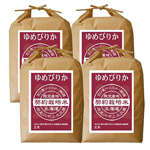 ゆめぴりか 玄米 20kg (5kg×4袋) 【新米 令和二年】【北海道産 5つ星お米マイスターの契約栽培米】