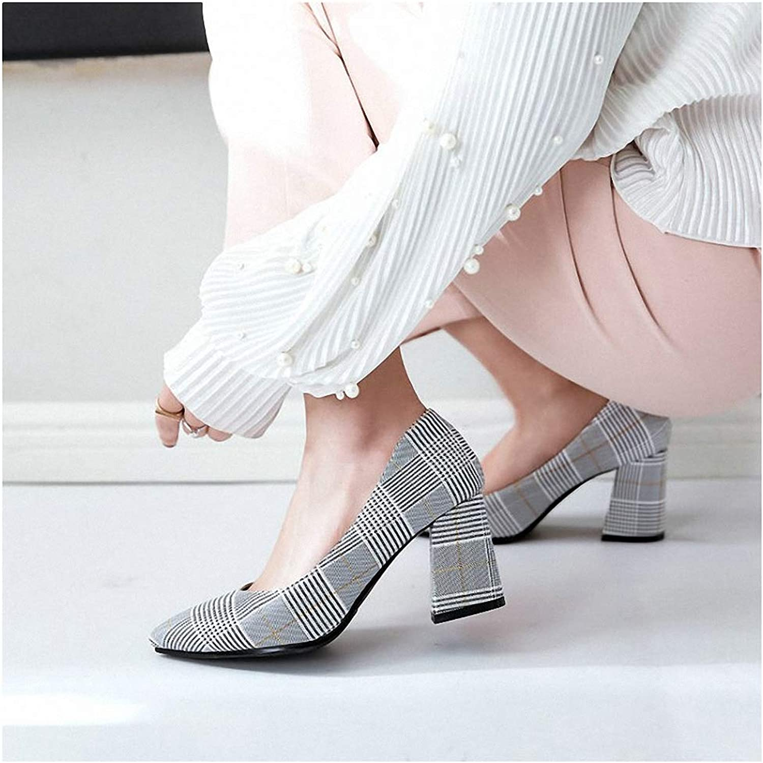 Tebapi Womens High-Heeled Pumps shoes Checked Plaid Pointed Toe Office Career Woman Pumps Stiletto Dress shoes High Heels shoes Ladies