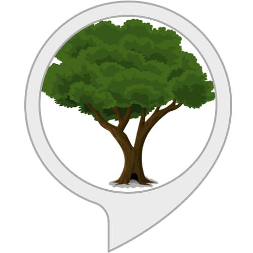 Der Jarvis Baum