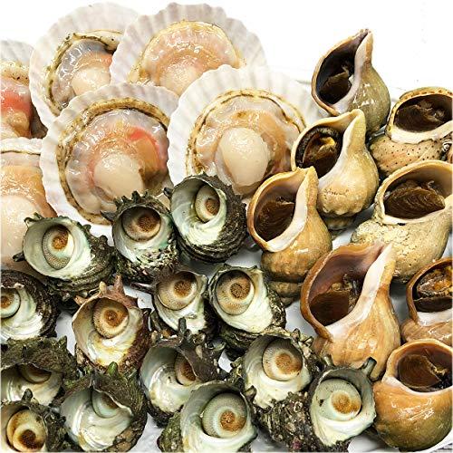 海鮮BBQセット(冷凍) ほたて片貝・青つぶ貝・さざえの3種類 活物専門商社【魚活】