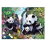 Panda DIY 5D - Kit de pintura de diamante, taladro completo, bordado de punto de cruz, lona de arte, para decoración de pared en casa, adultos y niños