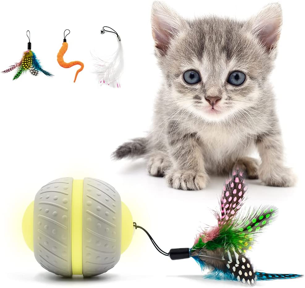 CooWay Cat Interactive Toys for Smart Cheap super special price Finally resale start Touch Indoor A Cats