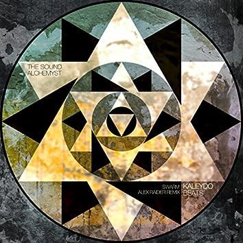 Swarm (Alex Raider Remix)