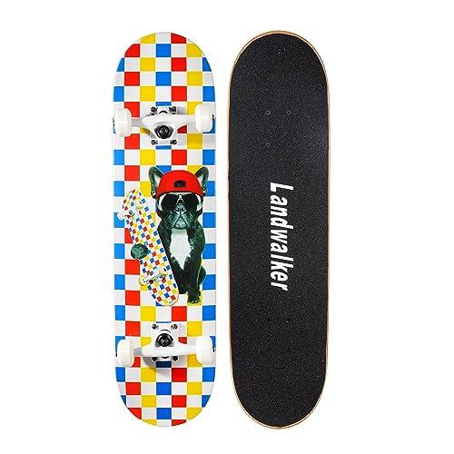 Cool Skateboard Decks: Amazon com