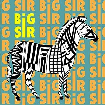 Big Sir