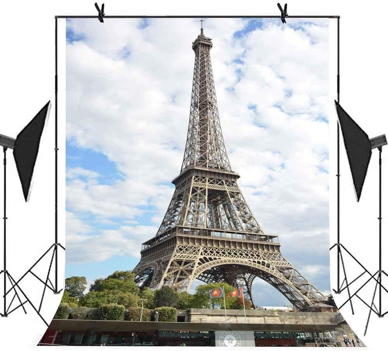 Meets 5x7ft 5x7ft 5x7ft City Landmark Backdrop Paris Eiffel