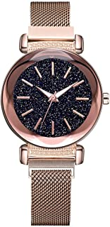 2019-Shi TOU-Fashion Simple Dial Mesh Belt Quartz Watch Magnetic Buckle Ladies Watch