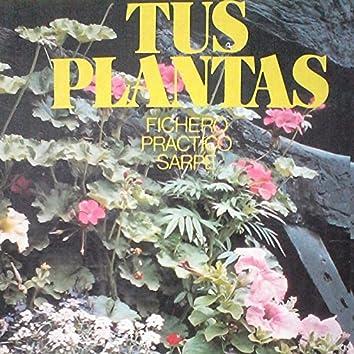 Tus Plantas - EP