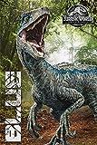 Jurassic Park PP34317 Drucken, Mehrfarbig, 61 x 91.5cm