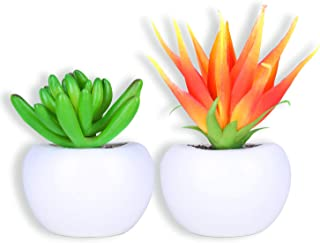 plant magnets target