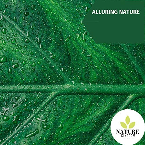 Nature Field Recordings & Nature Atmospheres