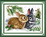 Joy Sunday Kits de costura a mano de punto de cruz DIY 11CT estampado para principiantes Patrón preimpreso-Conejos de la suerte
