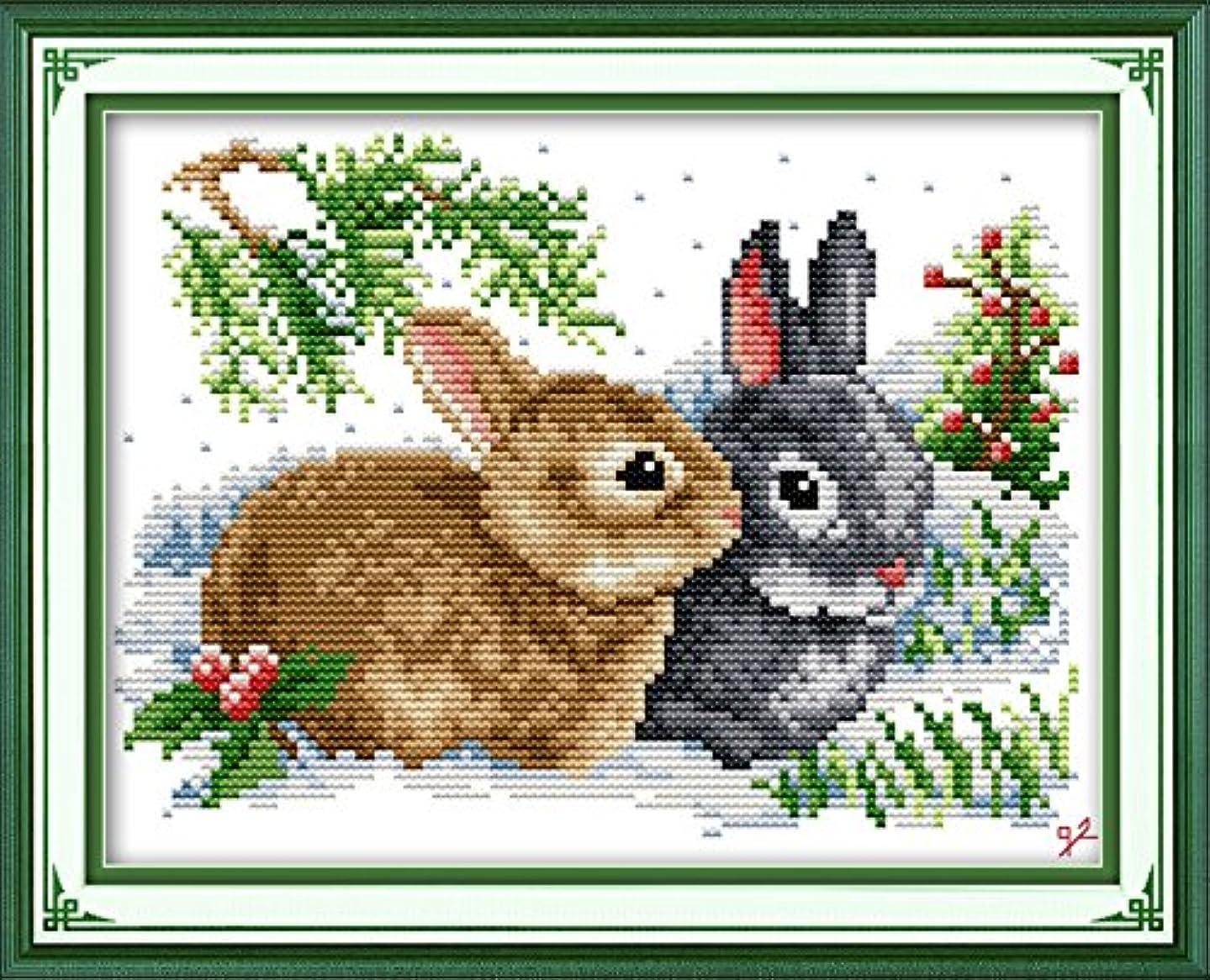 Joy Sunday Lucky Rabbits Cross Stitch Kits,11CT Stamped Cross Stitch Kit DIY Cross-Stitch Hand Embroidery kits DMC Floor DIY Art Crafts Sewing Needlework DMC Thread 13''x10''