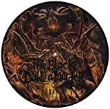 Abysmal - Picture Disc