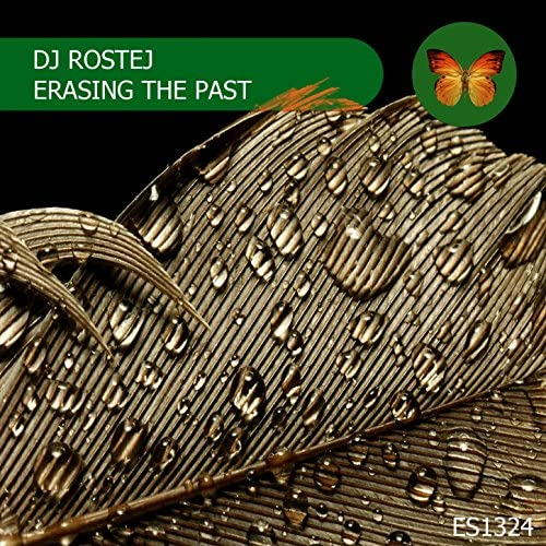 DJ Rostej