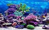 Leowefowa 5x3ft Vinyl 3D Underwater World Backdrop Aquarium Corals Photography Background Undersea Backdrop for Photography Baby Shower Backdrop Kids Children Birthday Party Decoration Studio Props