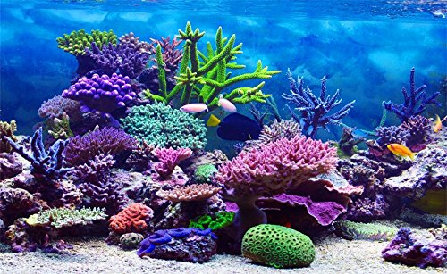 Leowefowa 5x3ft Vinyl 3D Underwater World Backdrop Aquarium Corals Photography Background Undersea Backdrop for Photography Baby Shower Backdrop Kids Children Birthday Party Decoration Studio Props