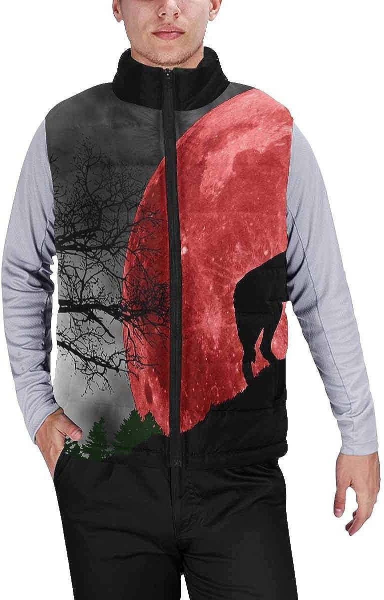 InterestPrint Men's Winter Full-Zip Outwear Padded Vest Coats Cool Jet Engine Airplane Theme