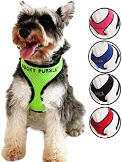 Oncpcare Durable Customize Dog Harness with Name, Embroidered Name Phone Number Pet Harness, Personalized ID Collar Soft Mesh Padded Collar Vest for Dogs