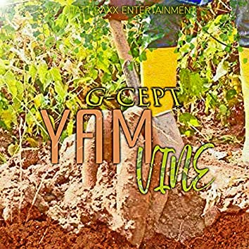 Yam Vine