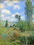 Kits de pintura por números﹣ Monet﹣ Carril en los campos de amapolas, Ile Saint-Martin﹣ Pintura de lienzo de bricolaje para adultos principiantes﹣ 16 x 20 pulgadas (sin marco)