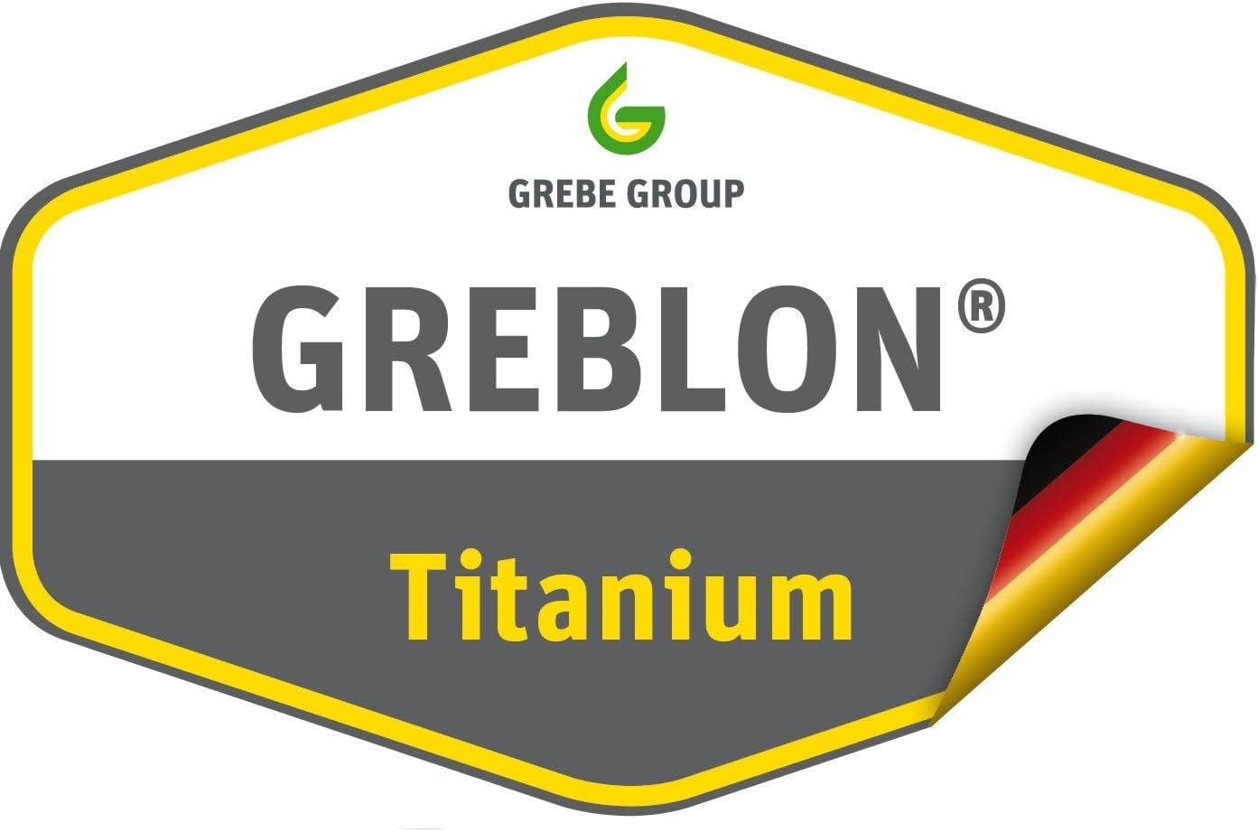 GSW 457231 Sauteuse FerroTherm avec rev/êtement Titane Granit 20 cm
