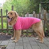 Lovelonglong 2019 Pet Clothing Dog Costumes Basic Blank T-Shirt Tee Shirts for Medium Dogs Rosered XXL