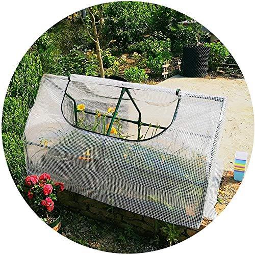 HWLL Invernadero de Jardín Portátil, Casa Verde Impermeable Al Aire Libre Resistente A los Rayos UV para Plantas de Flores de Patio Trasero, 120 × 60 × 60 Cm