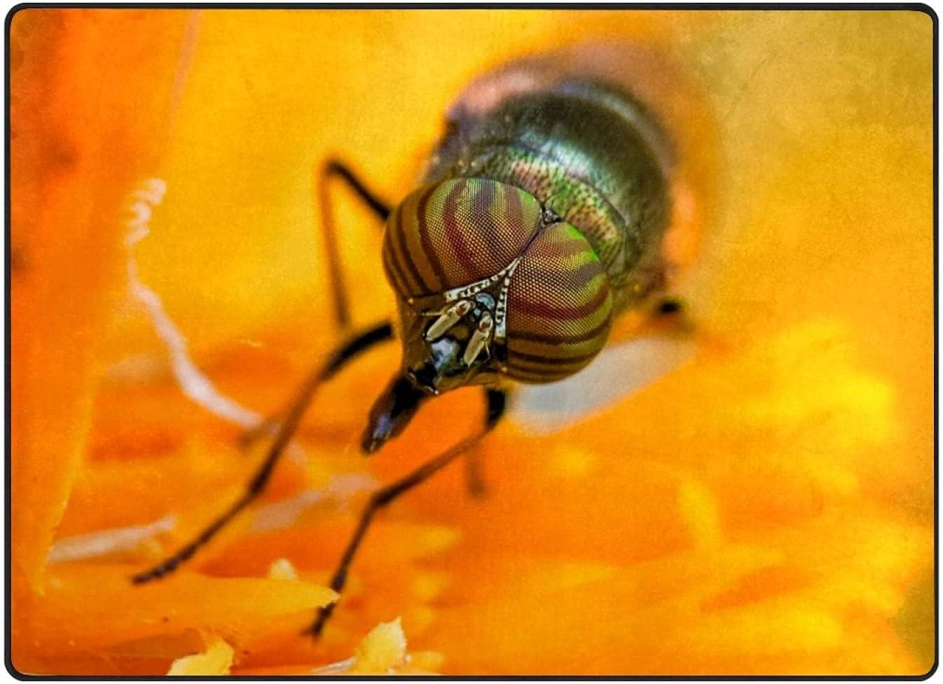 Seasonal Wrap Introduction Large Area Ranking TOP16 Rugs Bee Picking Nectar Modern Carpet Floor No-Sheddi