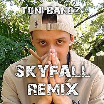 Skyfall (Remix)