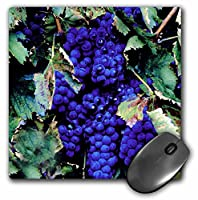 3drose LLC 8x 8x 0.25インチマウスパッド、Grapes (MP 1108_ 1)