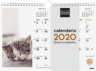 Finocam - Calendario de pared 2020 Imágenes Espiral 30x21 Gatitos español