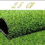 YNFNGXU Synthetischer Kunstrasen 25mm Florhöhe, üppige Rasendekoration Dachterrasse Hunderasen (Size : 2x1.5m)