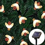 NEWYANG Cadena de Luces solares, 11M 60 LED 8 Modos IP65 Luces de Hadas LED de Abeja de Miel a Prueba de Agua para jardín al Aire Libre Camino Flor Valla Decoración navideña…