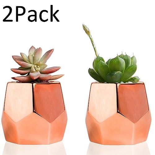 Bon Easma Copper Planter Flower Pots Ceramic Succulent Plants Pot/Catus Plant  Pots Set Of 2