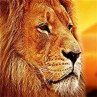 大人のためのジグソーパズル5000ピース、黄色いライオンすべてのジグソーパズルはユニークで、厚くて丈夫なピースで完璧にカットされています