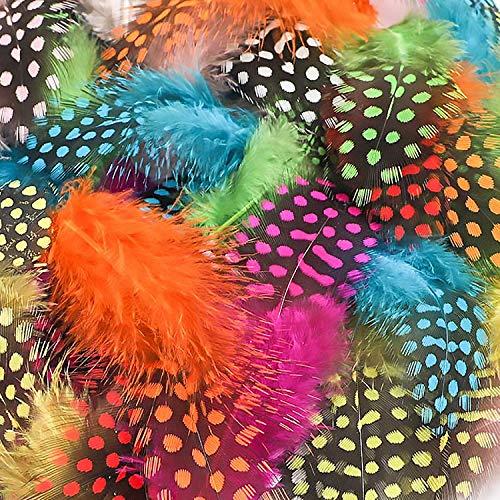 LEBENSWERT Bunte Perlenhuhn Feder zum Basteln 300 Stück 8-15cm Federn bunt für DIY Kunstwerk, Dekoration für Karneval Masken, Hüte oder Haarschmucken, 10 Farben
