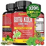 Organic Gotu Kola Extract Capsules 3200mg & Reishi, Cordyceps, Rosemary, Gingko Biloba, Valerian | Memory Focus, Brain Support, Mental Clarity | Anxiety Stress Relief, Mood Enhancer, 3 Months Supply