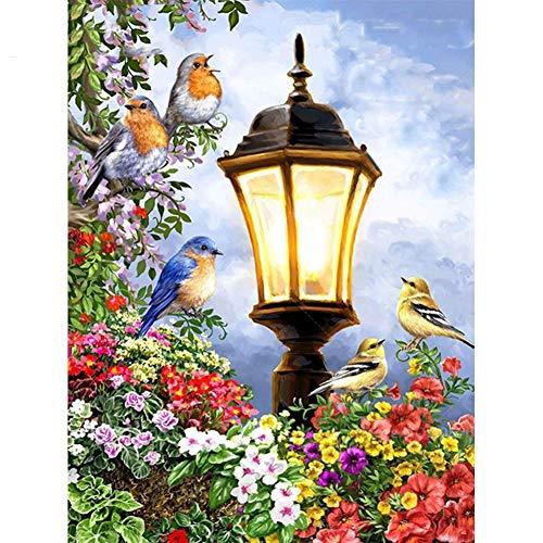 Lazodaer - Kit de pintura de diamante 5D para adultos, niños, principiantes, decoración para casa, oficina, regalos para él, sus luces y pájaros (30 x 39,9 cm)