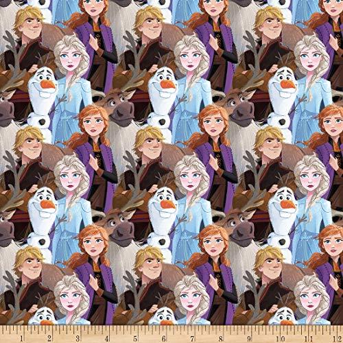 Springs Textiles Disney Frozen 2 Friends Forever embalado Multi tela