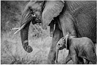 Tableau Decoration Murale Black And White Elephant And Baby Elephant Canvas Painting Posters And Prints Animals Wall Art P...